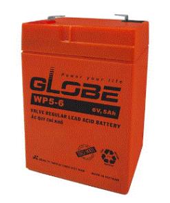 acquy globe wp5-6